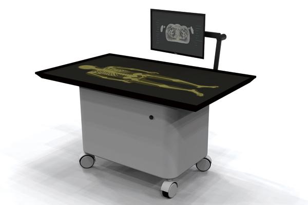 19H016 STEM x SCM: Virtual Anatomy Table Programme Details